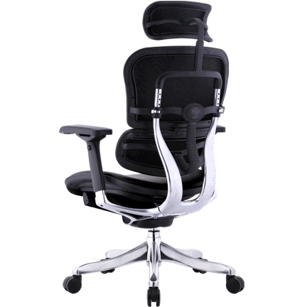 Comfort Seating Ergohuman Plus Lux