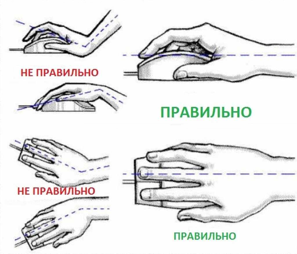 Правильное положение руки при работе с мышью